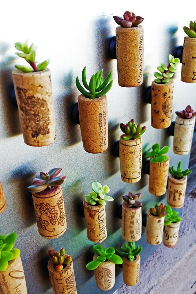 Những nút chai cũng có thể biến thành chậu cây nhỏ xinh.