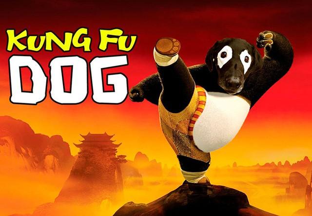 Chú gấu trúc trong Kungfu Panda đã bị mất đất diễn rồi!