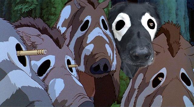 Labrador còn cải trang thành lợn rừng trong bức ảnh này.