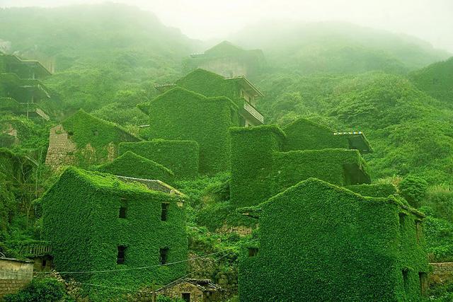 Một ngôi làng bị bỏ hoang tại Shengshi, Trung Quốc nổi tiếng bởi màu xanh của cây, lá bao phủ.
