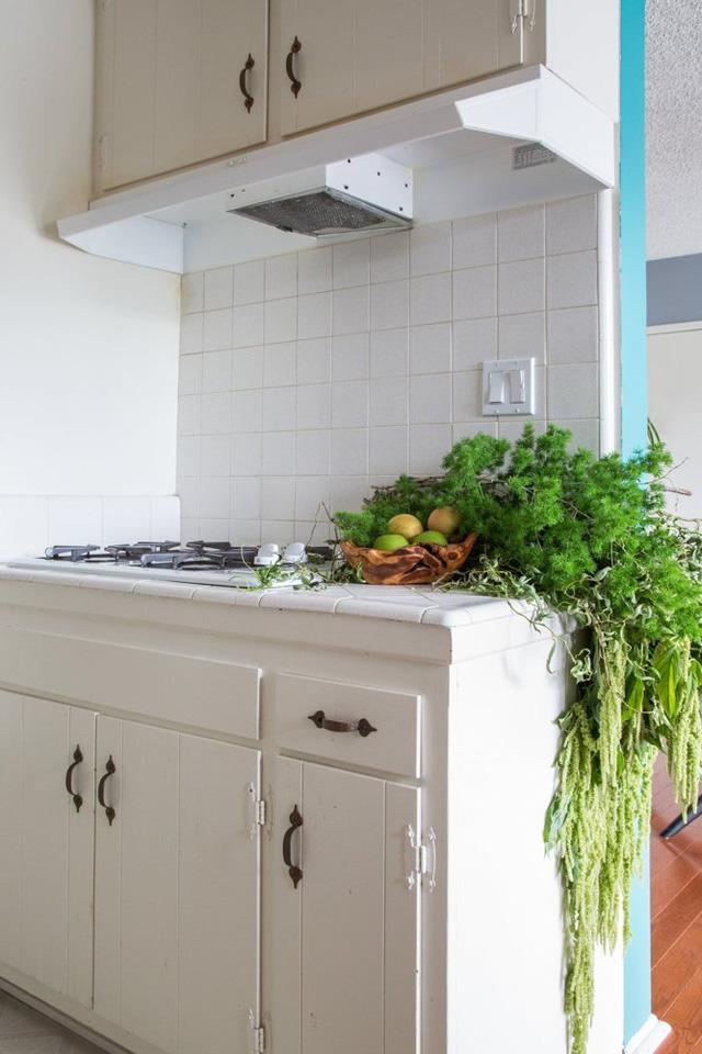 Cây trồng độc đáo bao phủ một góc bếp.