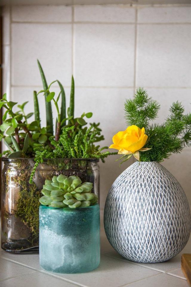 Những chậu cây nhỏ xinh được chủ nhân bày biện trong không gian bếp.