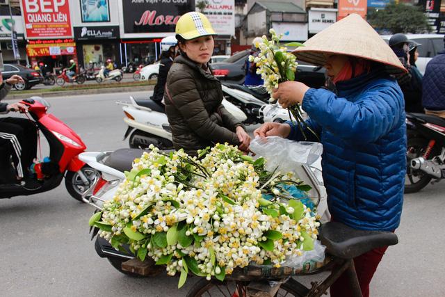 Mùi thơm man mát của hoa bưởi khiến không ít người dân Hà Nội cảm thấy xao xuyến