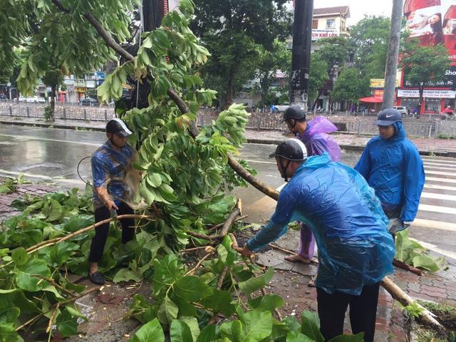 Hàng ngàn người trẻ xuất hiện trên các tuyến đường gặp sự cố để đảm bảo lưu thông trên phố và dọn dẹp các cây gãy đổ