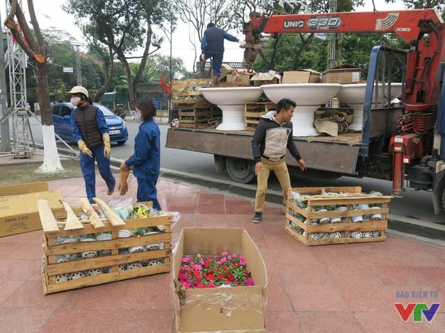 Những chậu hoa trang trí được công nhân vận chuyển để nhanh chóng hoàn thiện công tác chuẩn bị.