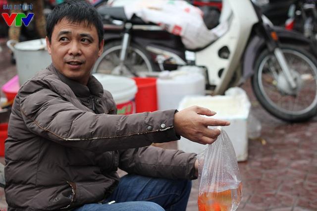 Ngay từ ngày 21 - 22 tháng Chạp, cá chép đỏ đã theo các thương lái có mặt tại các chợ ở Hà Nội, đáp ứng nhu cầu mua và cúng ông Táo của người dân