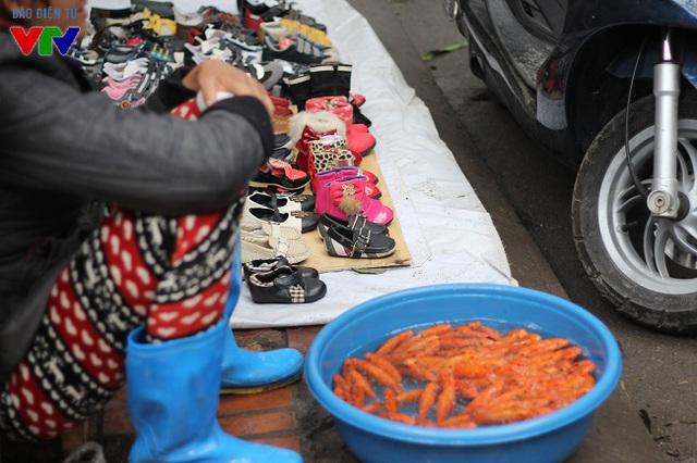 Cá chép vàng và đỏ loại nhỏ trở thành mặt hàng được người tiêu dùng ưa chọn bởi vừa ý nghĩa vừa phù hợp túi tiền