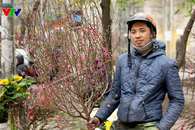 Theo một chủ bán đào Nhật Tân, do thời điểm trước Tết có nhiều đợt không khí lạnh mạnh dồn xuống nên đào không kịp trổ hoa trong Tết.