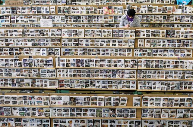 Di ảnh của hàng nghìn nạn nhân trong vụ thảm họa kép. (Ảnh: Reuters)