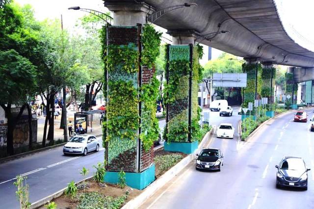 Vường đứng dưới chân cầu vượt tại Mexico City. Ảnh: fundoverde