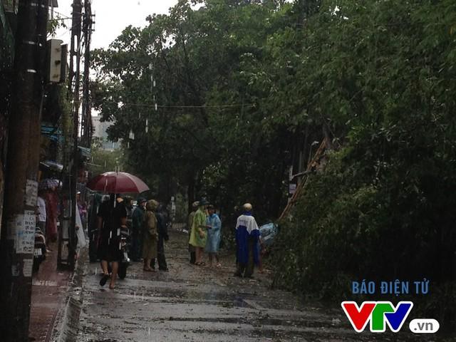 Lực lượng chức năng phối hợp cắt cây gẫy đổ ngay trong lúc mưa lớn để giải phóng đường đi, cấp điện trở lại cho các hộ dân xung quanh chịu ảnh hưởng.
