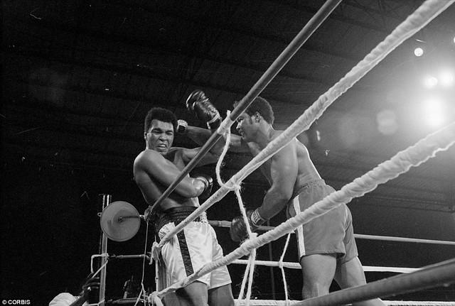 Cuối năm 1974 Ali gặp George Foreman. Ở trận đấu này, Ali liên tục bị George Foreman dồn ép nhưng ông vẫn đứng vững và bất ngờ vùng lên ở hiệp thi đấu thứ 8 để hạ gục đối thủ. Ở tuổi 32, Ali trở thành người thứ hai trong lịch sử quyền anh giành lại được chức vô địch thế giới. Ảnh: Corbis