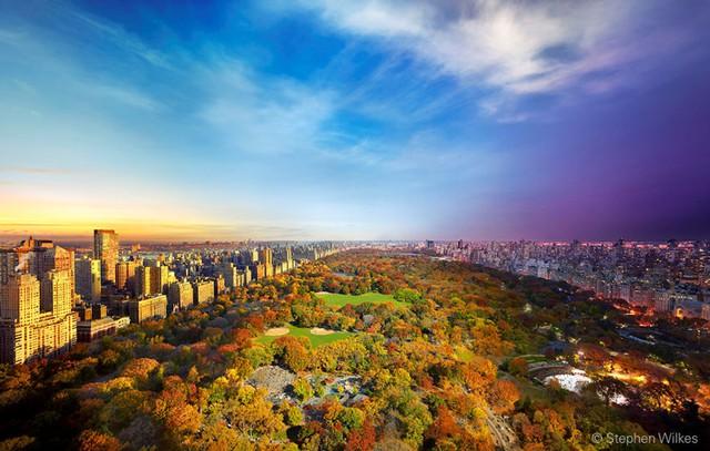 Khung cảnh công viên trung tâm nhìn từ Essex House ở New York (Ảnh: Stephen Wilkes)