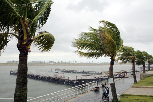 Đến 11h ngày 27/7, tại Cảng tàu khách Quốc tế Tuần Châu đã không còn tàu du lịch đỗ. (Ảnh: baoquangninh)