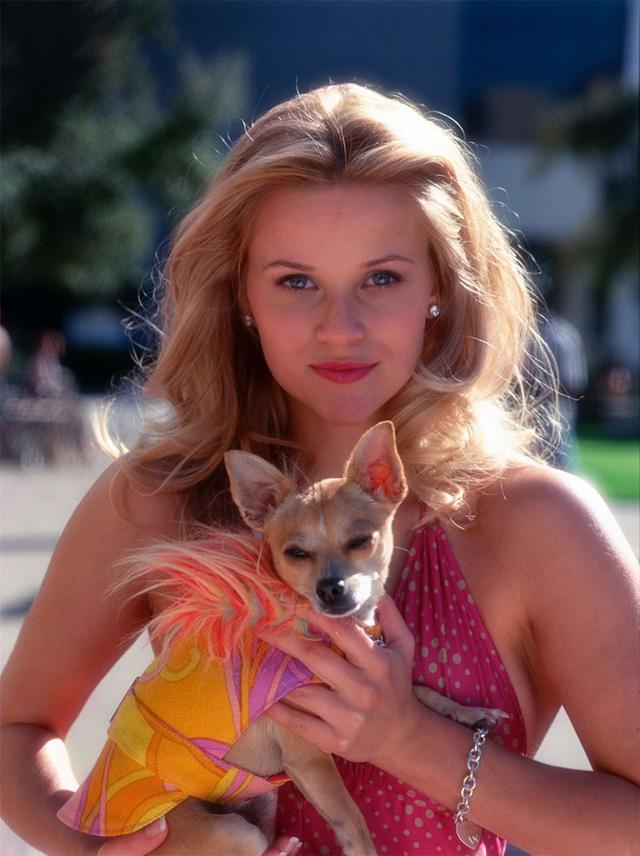Cô nàng Reese Witherspoon đã có vai diễn để đời với hình ảnh nữ luật sư tóc vàng xinh đẹp trong phim Legally Blonde. Từ đó, cô thường được nhiều người nhắc đến với biệt danh người đẹp tóc vàng.