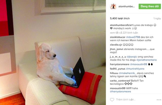 Một trong những bức ảnh thú vị được Sanchez chia sẻ trên Instagram của Atom và Humber
