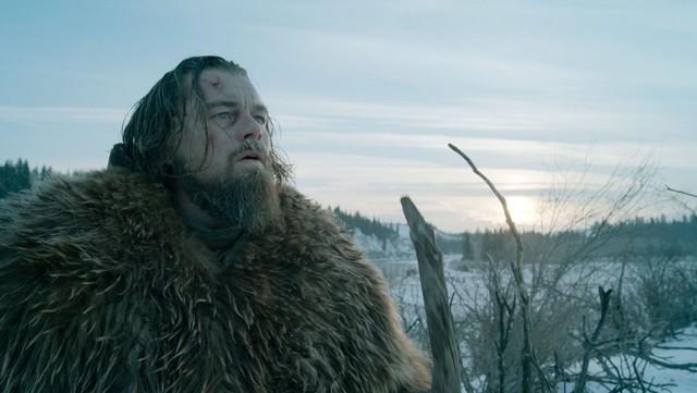 Con đường đến Oscar của Leonardo DiCaprio được cho là chưa bao giờ thênh thang đến thế.