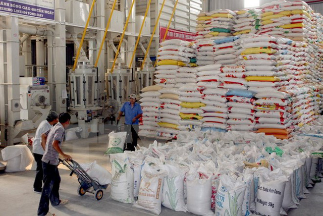 Chế biến gạo xuất khẩu. (Ảnh: Đình Huệ/TTXVN)