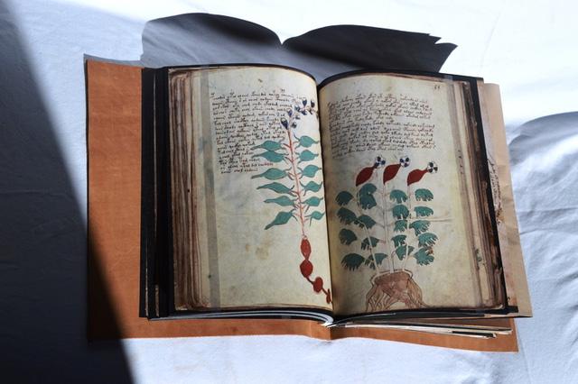 Quyển sách Voynich gốc hiện đang được lưu giữ tại đại học Yale.