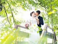 Sự tương đồng giữa kết hôn và độc thân