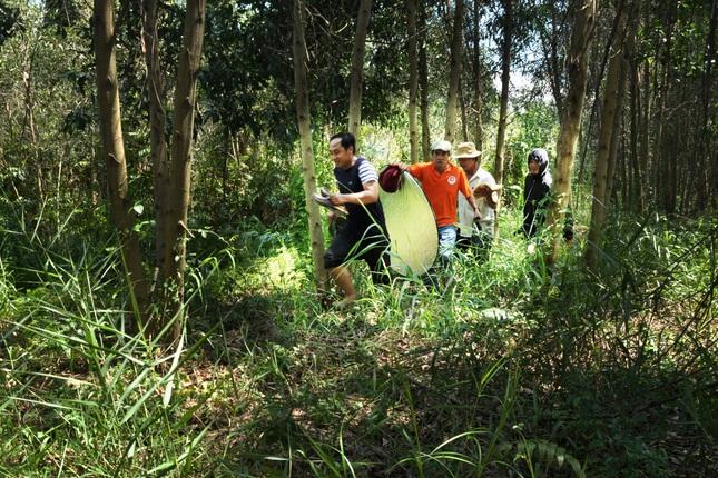 Ê-kíp THĐT bị ong đuổi khi tác nghiệp tại U Minh Thượng,Cà Mau - 2017