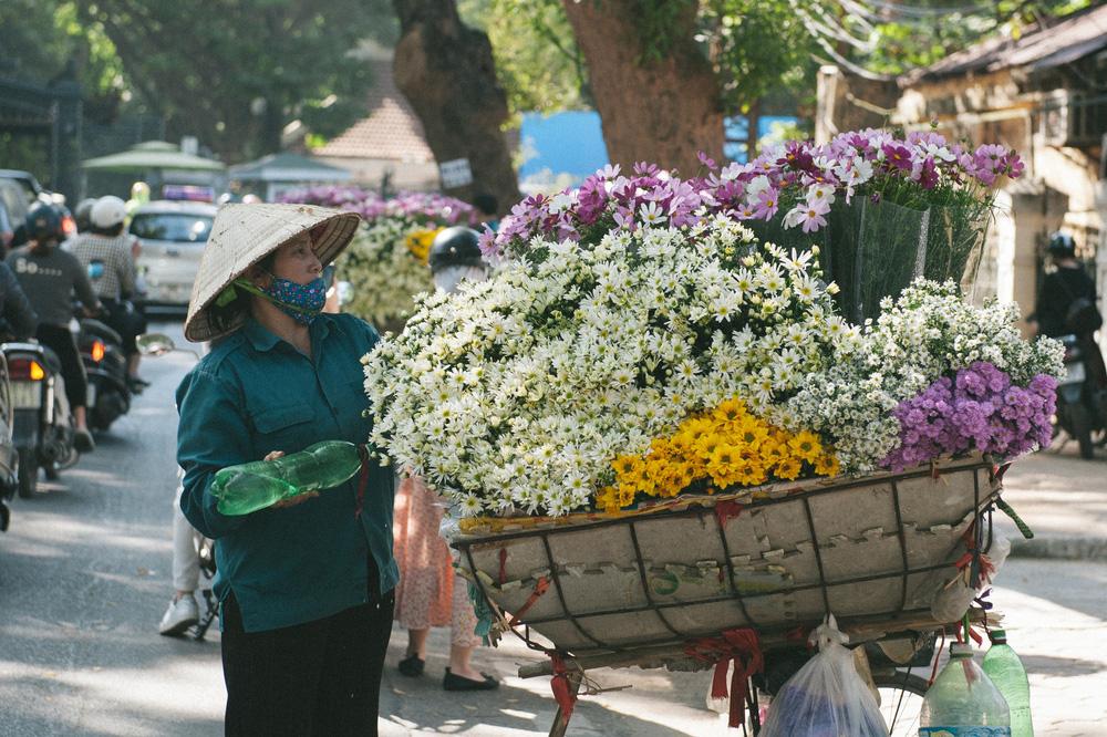 Cúc họa mi ngập tràn phố phường Hà Nội, giá tăng vì khan hàng - Ảnh 5.
