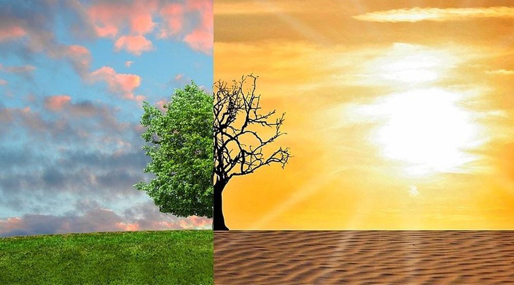 2020 - năm của những điều lẽ ra đối với khí hậu thế giới - Ảnh 1.