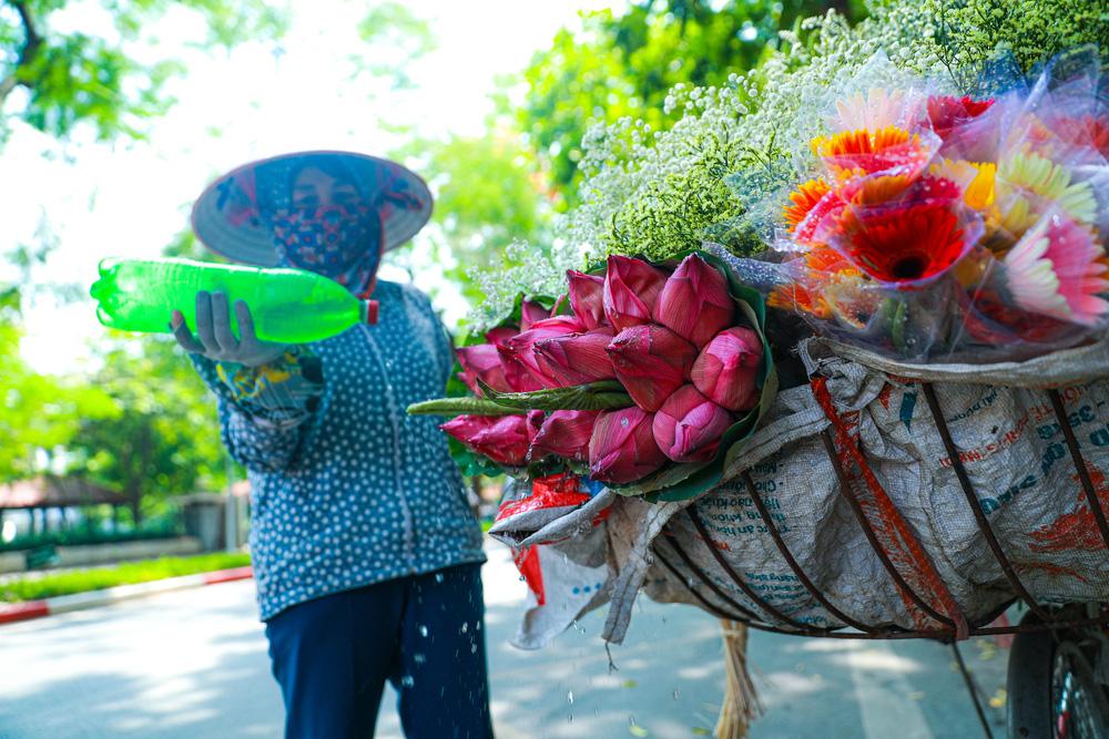 Sen Hồ Tây vào mùa, rực rỡ khoe sắc khắp phố phường Hà Nội  - Ảnh 17.