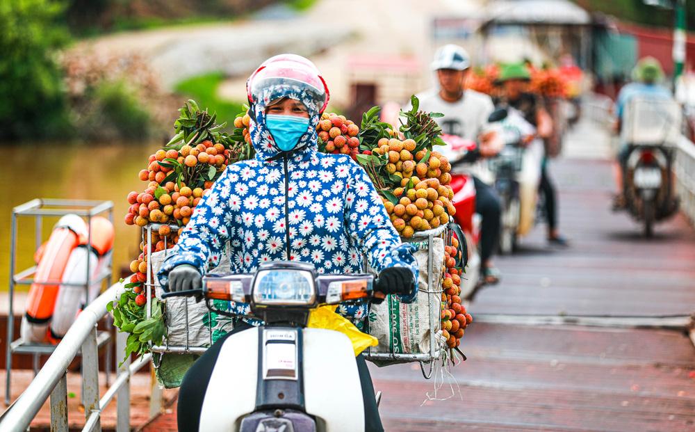 Lục Ngạn (Bắc Giang) mùa vải chín: Phiên chợ rực rỡ sắc đỏ - Ảnh 5.