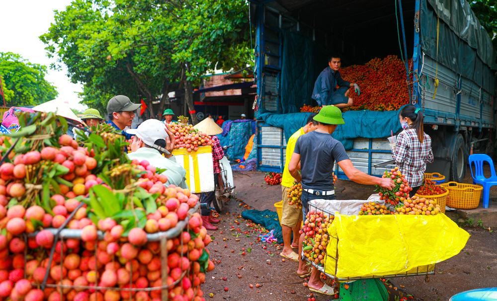 Lục Ngạn (Bắc Giang) mùa vải chín: Phiên chợ rực rỡ sắc đỏ - Ảnh 7.