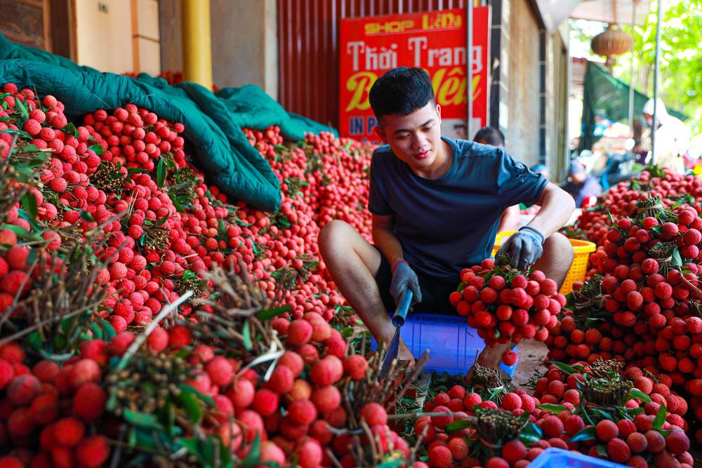 Lục Ngạn (Bắc Giang) mùa vải chín: Phiên chợ rực rỡ sắc đỏ - Ảnh 10.