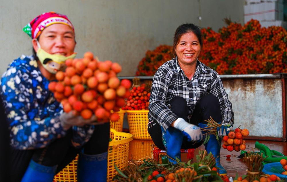 Lục Ngạn (Bắc Giang) mùa vải chín: Phiên chợ rực rỡ sắc đỏ - Ảnh 18.