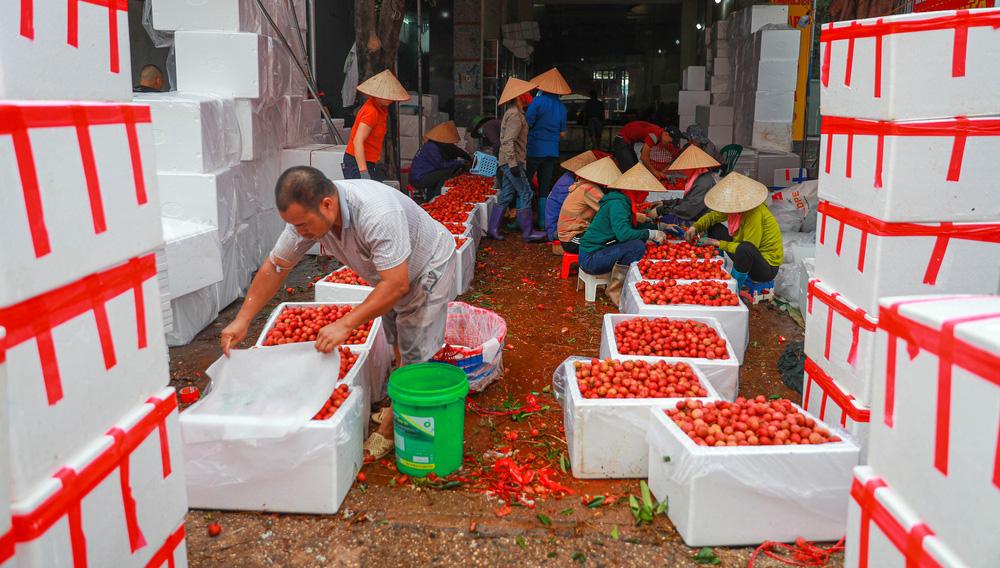 Lục Ngạn (Bắc Giang) mùa vải chín: Phiên chợ rực rỡ sắc đỏ - Ảnh 14.