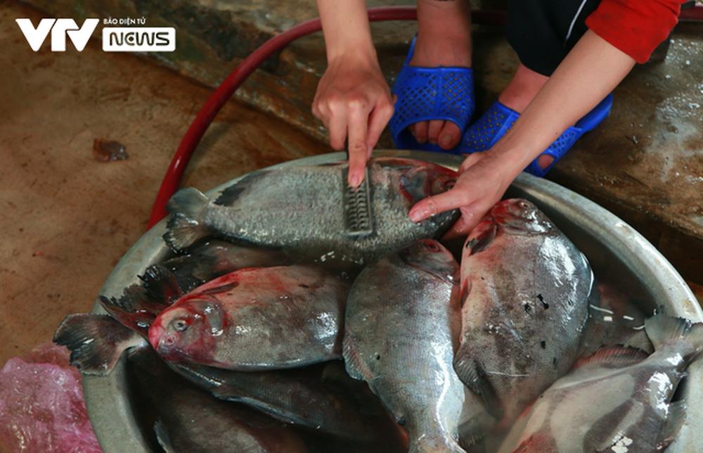 Cá nướng than hồng ngon khó quên của miền biển Cửa Lò - Ảnh 2.