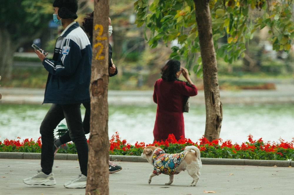 Muôn kiểu chống rét của người Hà Nội trong đợt rét đậm nhất đầu mùa - Ảnh 8.