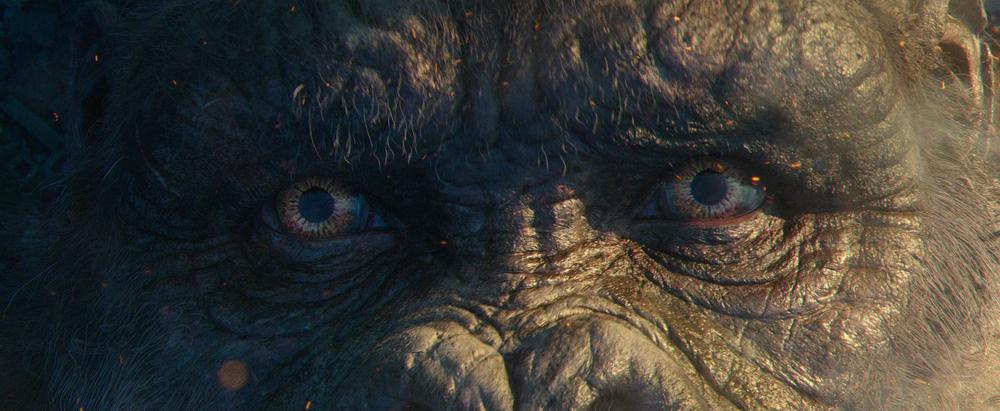 Godzilla Đại Chiến Kong: Sướng mắt, đã tai, xứng đáng bom tấn số 1 Vũ trụ Quái vật - Ảnh 4.