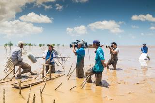 Phỏng vấn ngư dân trồng bần