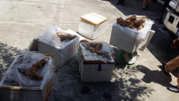 Bắt vụ vận chuyển gần 250kg gân bò không rõ nguồn gốc