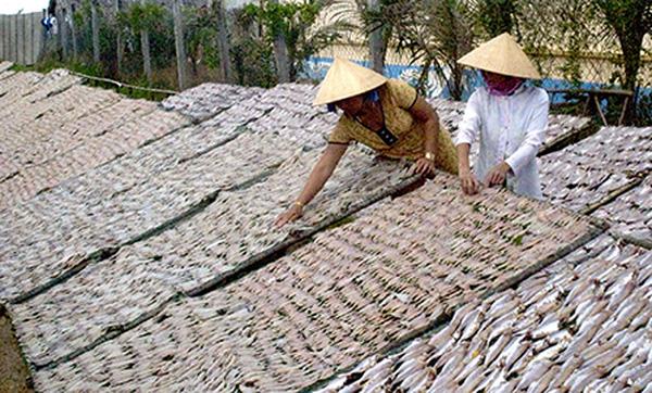 Mặn mòi làng hải sản khô xứ biển Trần Đề