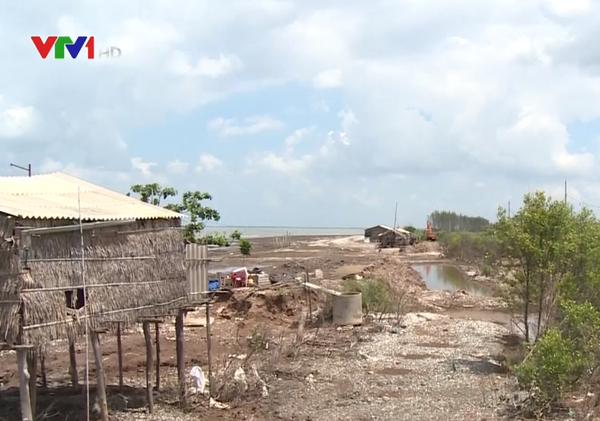 Bến Tre: 54ha rừng phòng hộ bị nhấn chìm do xói lở bờ biển