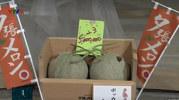 Cặp dưa giá kỷ lục 5 triệu Yen - ảnh 1
