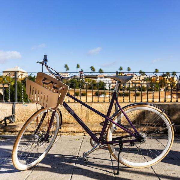 Xe đạp tái chế từ cà phê nén - ảnh 1