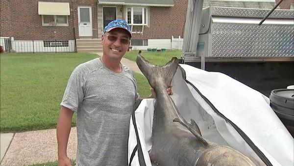 Lập kỷ lục với cá bớp khổng lồ 40kg - ảnh 1