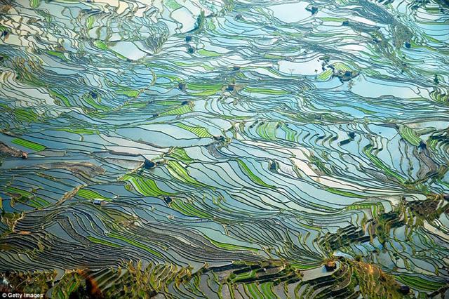 Ngất ngây với những khung cảnh đẹp như tranh vẽ ở Trung Quốc - Ảnh 1.
