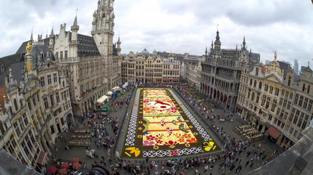 Choáng ngợp với 600.000 bông hoa tạo nên thảm hoa khổng lồ ở Bỉ - Ảnh 10.