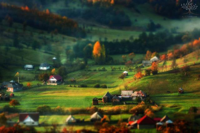 Những khuôn hình đắt giá của mùa thu Romania từ máy ảnh rẻ tiền - Ảnh 9.