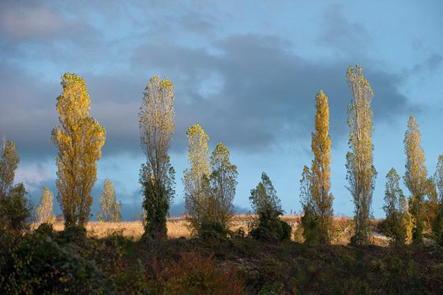 Ngắm khung cảnh mùa Thu đẹp như cổ tích ở Crimea - Ảnh 11.