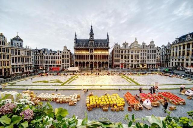 Choáng ngợp với 600.000 bông hoa tạo nên thảm hoa khổng lồ ở Bỉ - Ảnh 11.