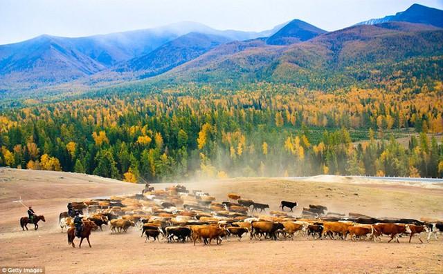 Ngất ngây với những khung cảnh đẹp như tranh vẽ ở Trung Quốc - Ảnh 2.