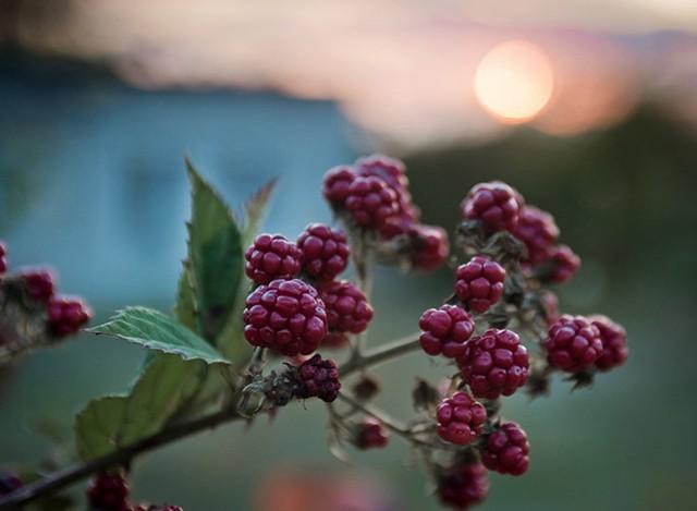 Ngắm khung cảnh mùa Thu đẹp như cổ tích ở Crimea - Ảnh 12.